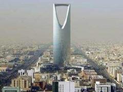 中国石化在沙特发布石化服务的主题报告