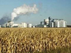 生物质发电成为新型市场项目