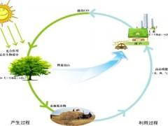 生物质能发展未来可期!