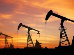 最新统计,西部石油新增探明地质储量占